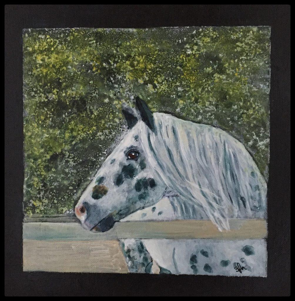hesteportræt
